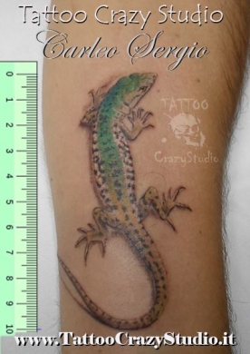 Tatuaggi tattoo Lucertola